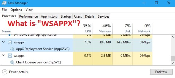 "What is""WSAPPX""? 