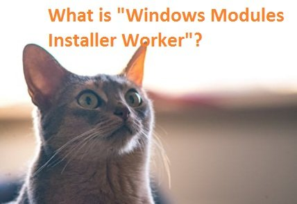 "What is ""Windows Modules Installer Worker"" Windows?(All Problems Solved)"