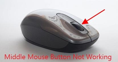 C:\Users\User\Desktop\mouse.jpg